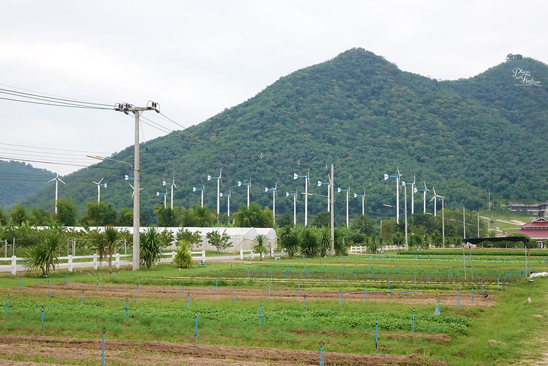 Chang Hua Man Royal Project windmills