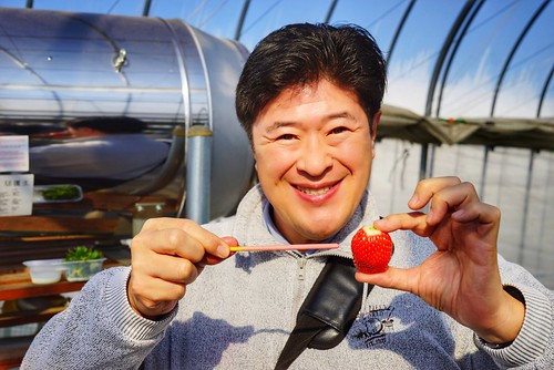 Chawanさん photo polepole farm strawberry picking 25