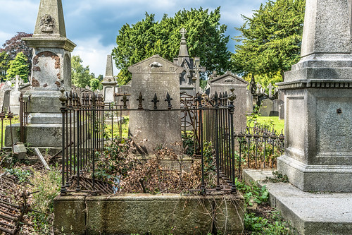GLASNEVIN CEMETERY [MY FIRST DAY USING THE NEW SONY A7RMkII] REF-107414 | by infomatique