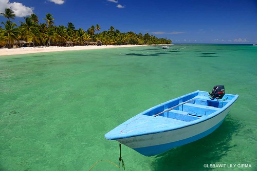 Saona Island. From What You Need to Know Before Visiting the Dominican Republic