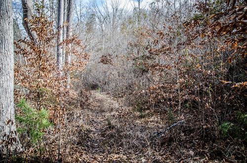Todd Creek Falls-037
