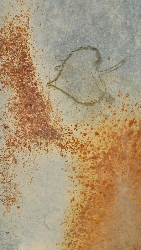 leaf imprint and rust
