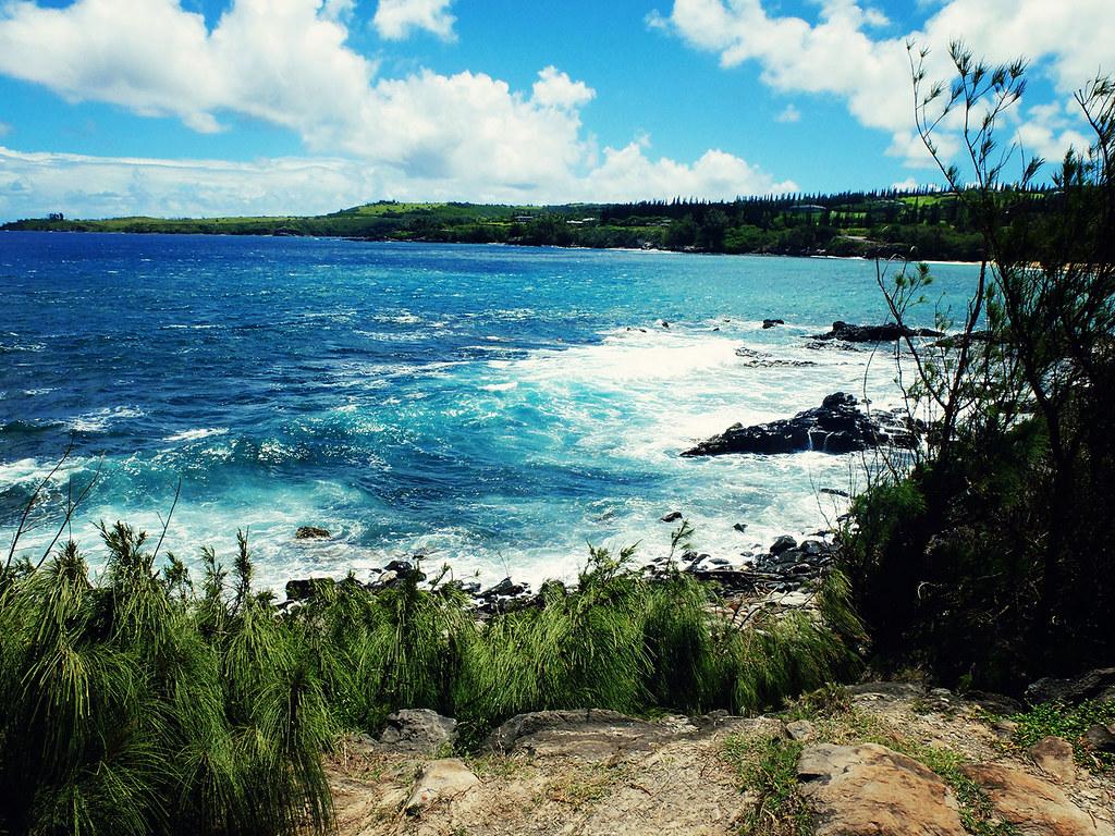 Maui-(29)