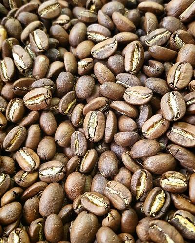 Nicaragua Buenos Aires - Java Cultivar
