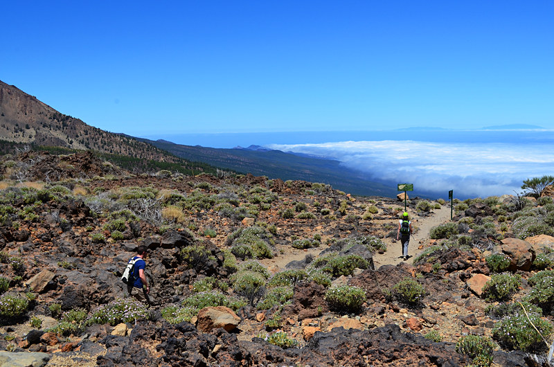 Walking above the clouds, Tenerife