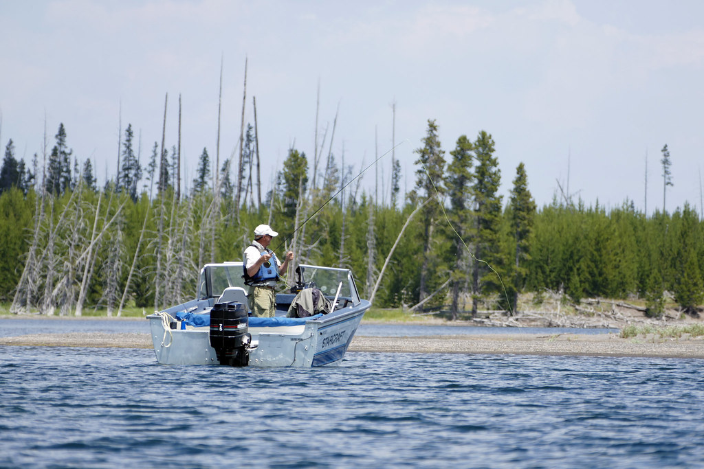 Fishing in yellowstone lake fishing in yellowstone lake for Yellowstone park fishing report