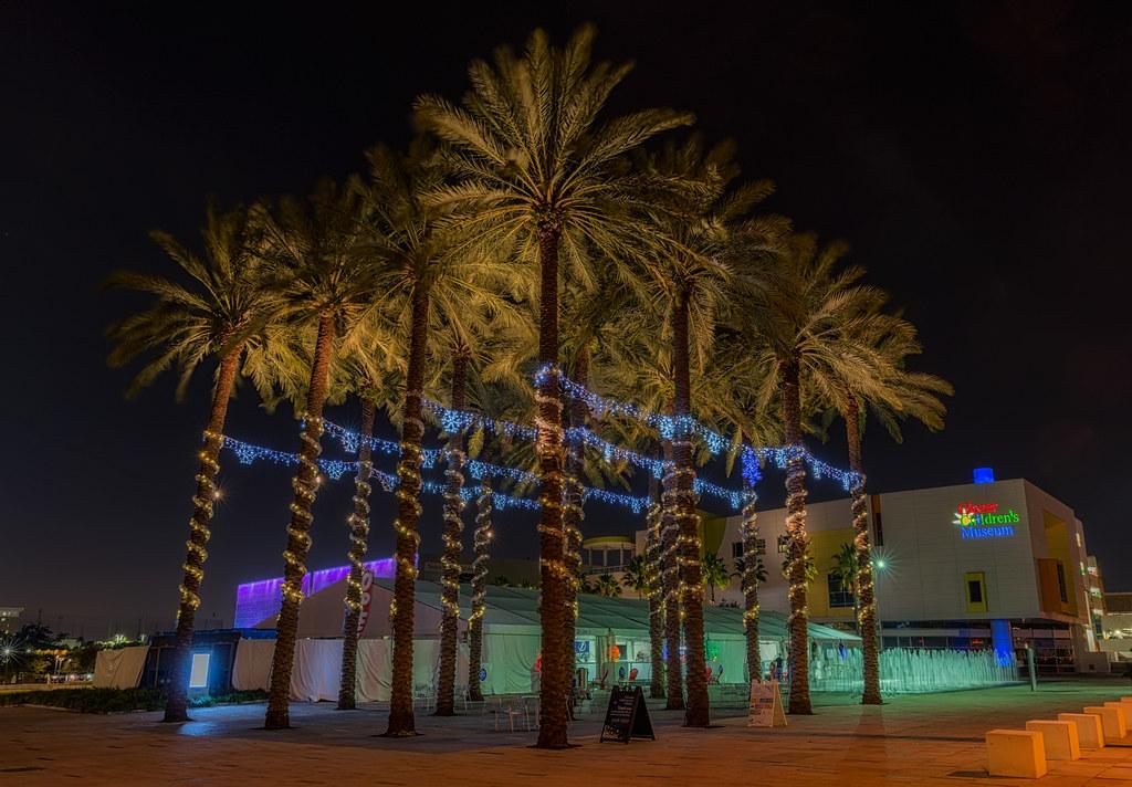 ... Palm Tree Christmas Lights | By Photomatt28