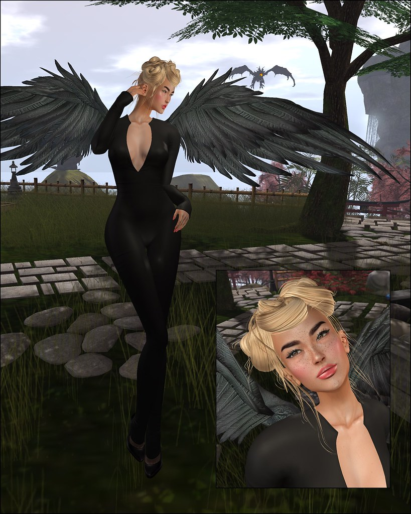 Bento Wings