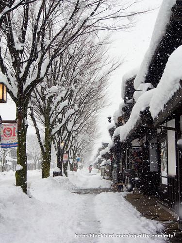 Snow Day 2 #06