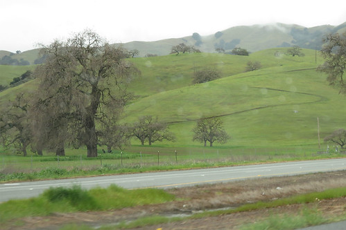 hills #2