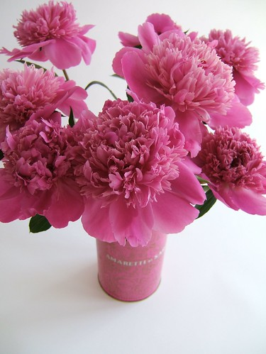 Pink tin with Peony | by geishaboy500