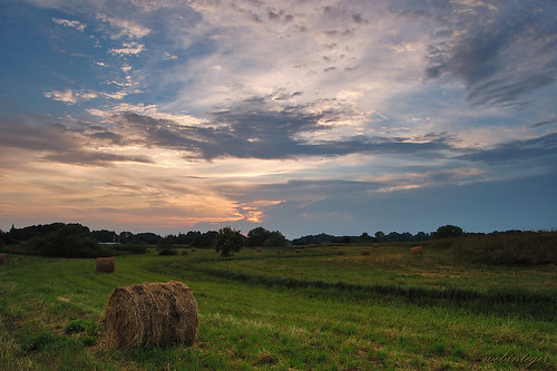 Countryside Evening | by Dietrich Bojko Photographie