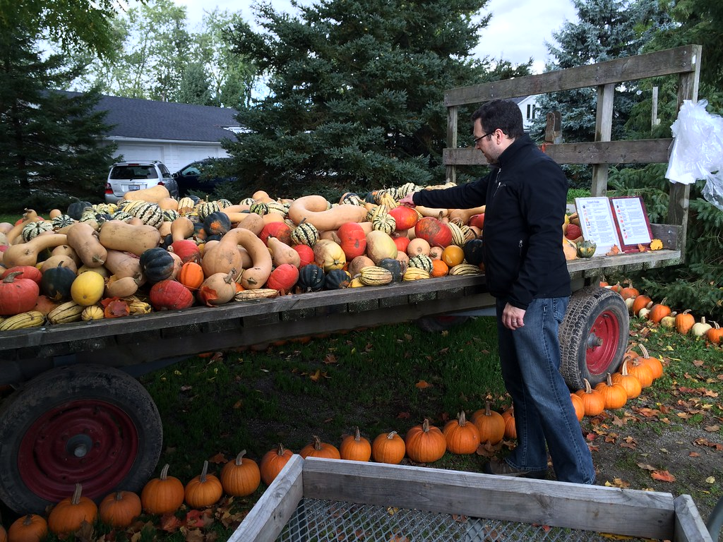 Spend a day on a farm: enjoy shopping for fresh produce