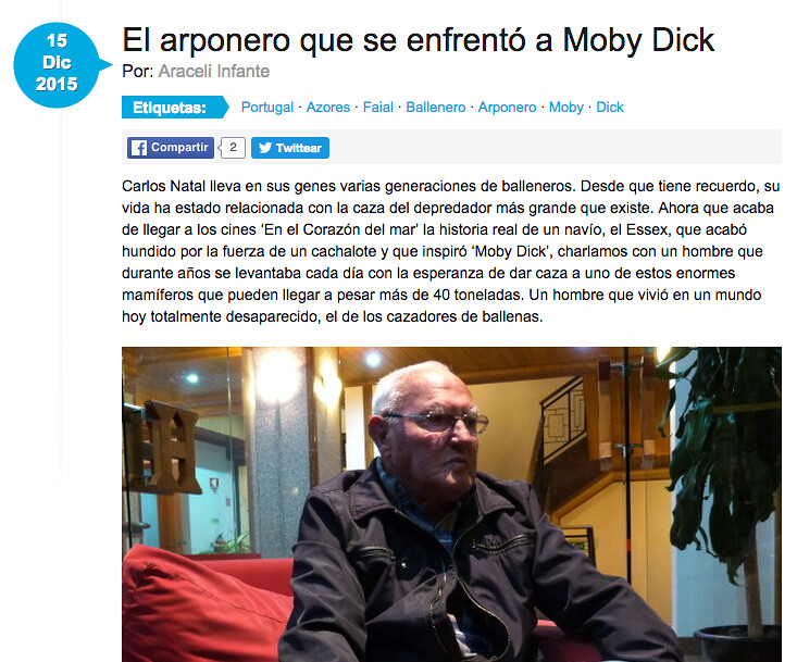 moby dick news, whales
