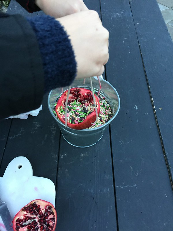 DIY Pomegranate Bird Feeder