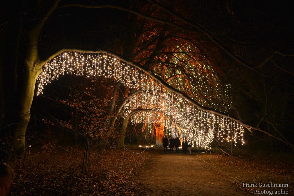 "Christmas Garden 043 | Bilder vom ""Christmas Garden Berlin ..."