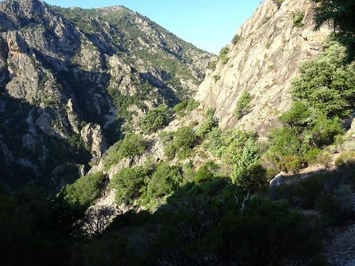 Au 1er col du sentier de l'Ancinu, en vue du resserrement rocheux