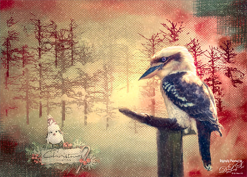 Holiday Image with a Laughing Kookaburra