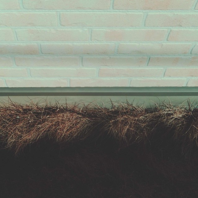 Dry grass and wall