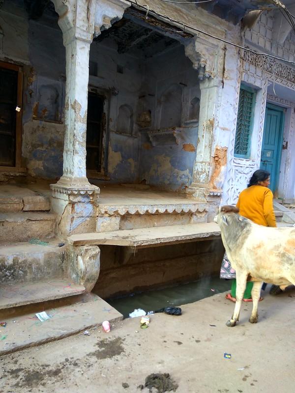 Индия,канализация