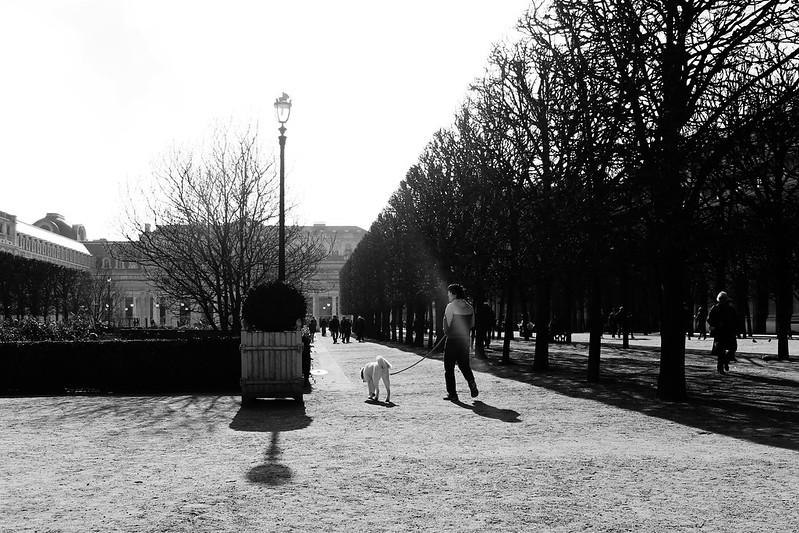 Paris February 2017