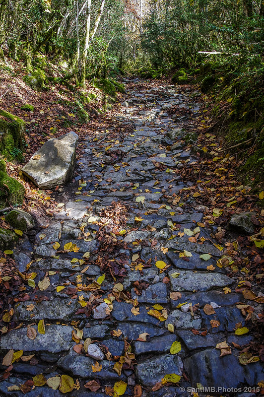 El camino de subida desde la Cascada de Belabarze