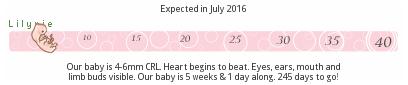 lilypie lilypie.com pregnancy embryo fetal ticker baby evolution growth Week 5