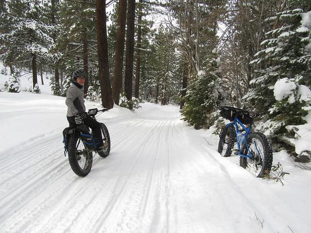 fatbikes o bicicletas de ruedas gordas