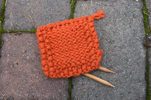 Yarn of the Month Club, October 2015 | by Terriko