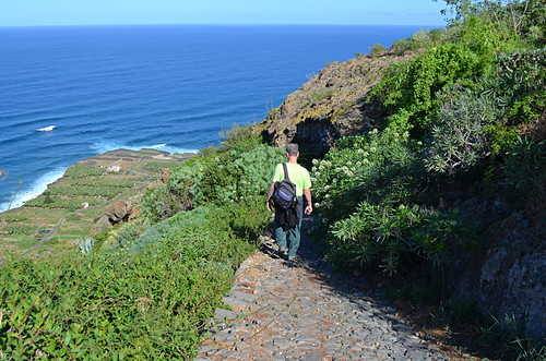 Route above San Juan de la Rambla, December, Tenerife