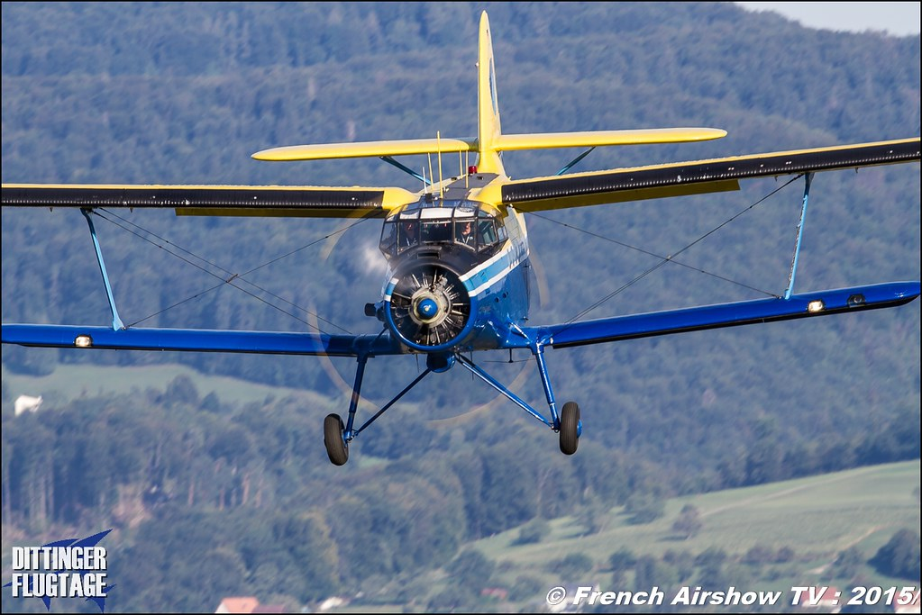 Aeronefs , Dittinger Flugtage 2015 , Internationale Dittinger Flugtage, Meeting Aerien 2015