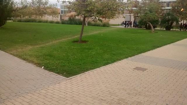Fallo de diseño en jardines. Los usuarios han creado su propio camino. Innovación