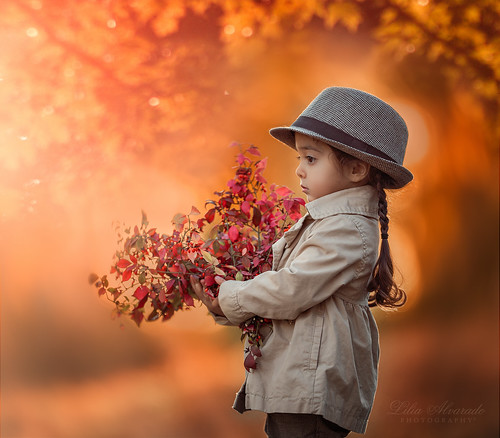 My Autumn... | by liliaalvarado