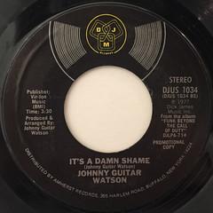 JOHNNY GUITAR WATSON:IT'S A DAMN SHAME(LABEL SIDE-B)