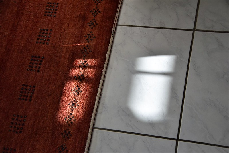 Shadows 23.01 (5)