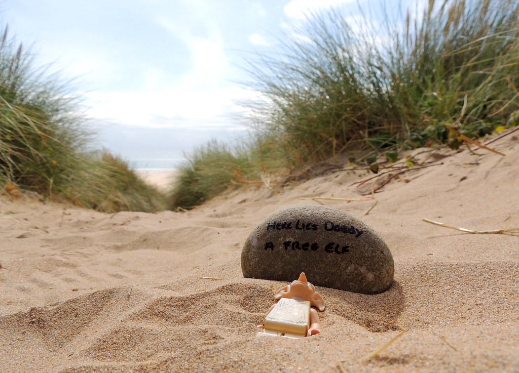 here lies dobby - photo #10