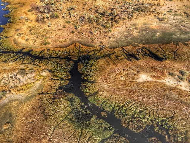 El delta del Okavango desde el aire (avioneta en Botswana)