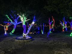 102 - Parque illuminiert 03 - Bayahibe