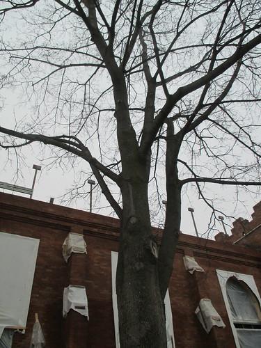 Arch Lofts (4)