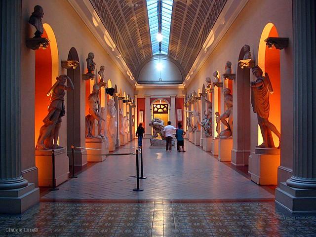 Image result for Rio Museu Nacional