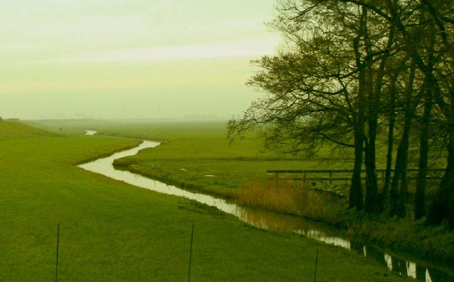 About >> Field and Stream | Crooked creek in North Holland ...