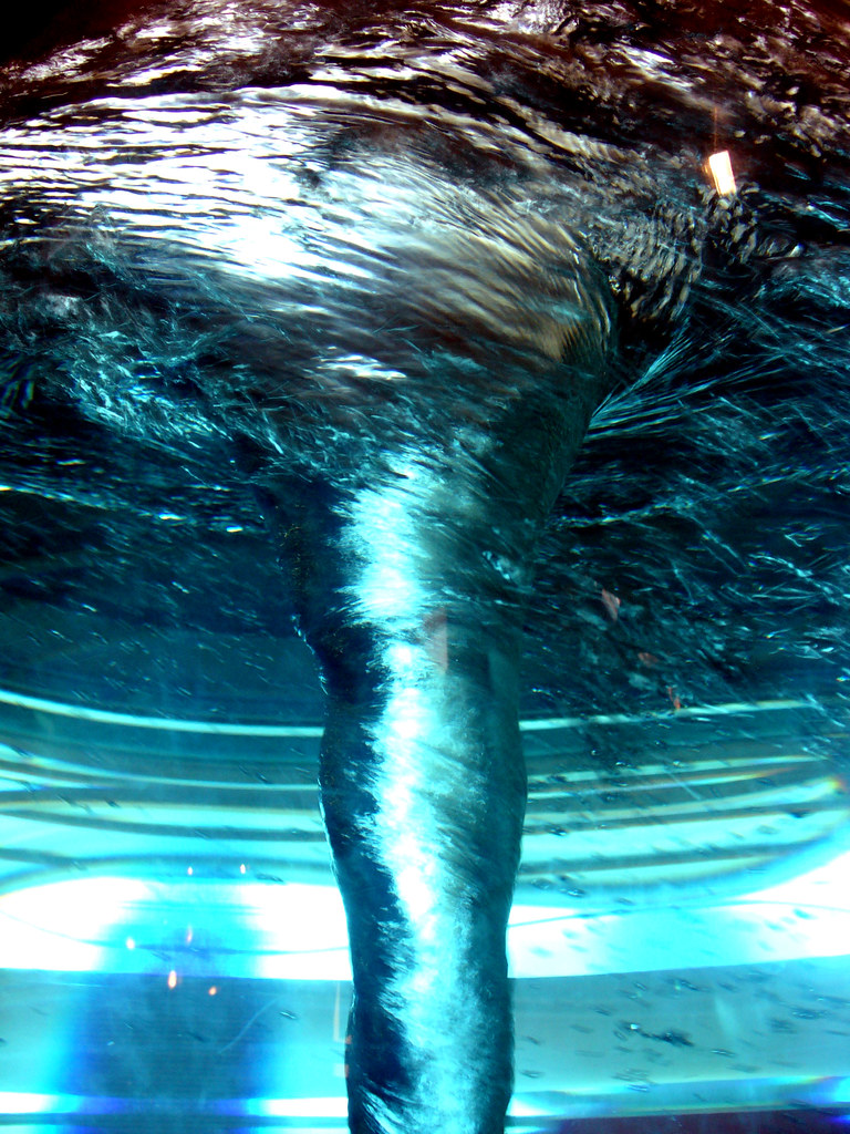 vortice d'acqua  Napoli città della scienza. Whirlpool The …  Flickr