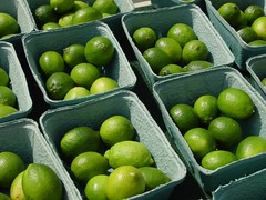 Limes | by Generation X-Ray