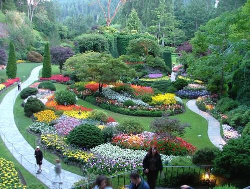 Sunken gardens butchart gardens victoria british columb for Garden discount chelles