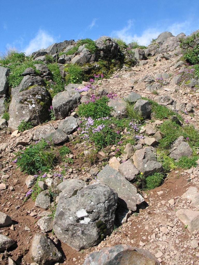 Alpine 2 Yatsugatake Mountains Nagano Japan David