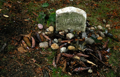 Tributes left at the grave of Henry David Thoreau | by Muffet