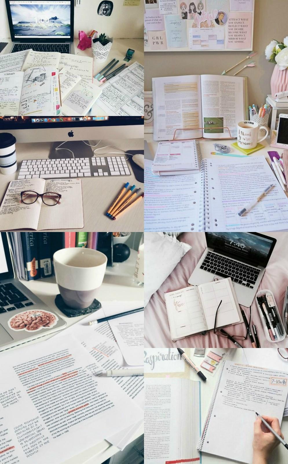 studyc