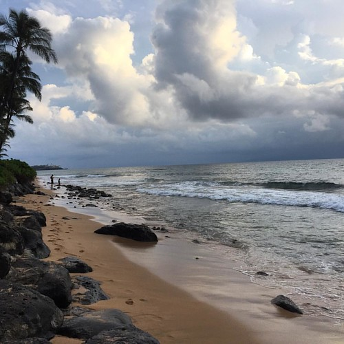 #kvphawaii First beach walk in #Maui | by queenkv