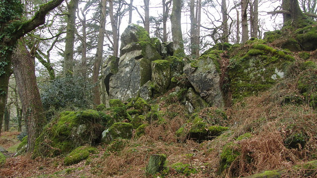 An outcrop at the base of Dewerstone Hill.