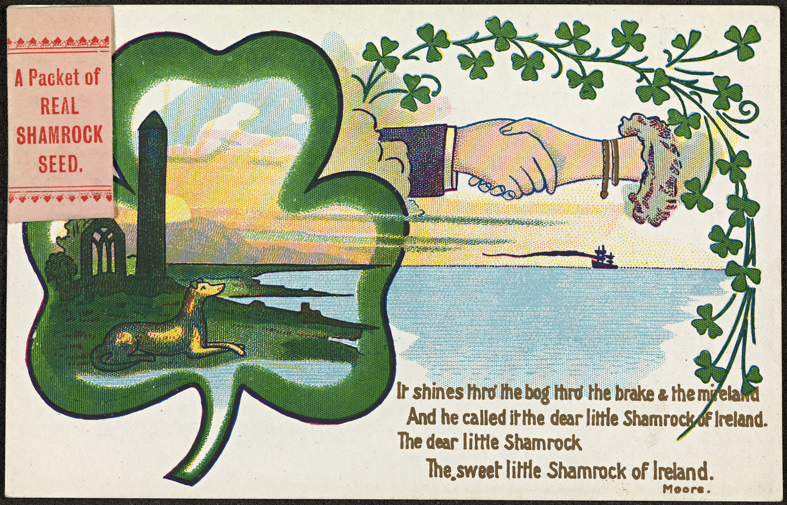 The Sweet little Shamrock of Ireland | by National Library of Norway